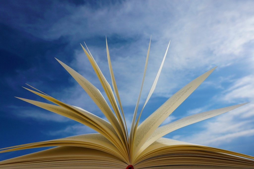 book, pages, read